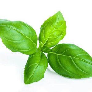 basil leaf liverdetox