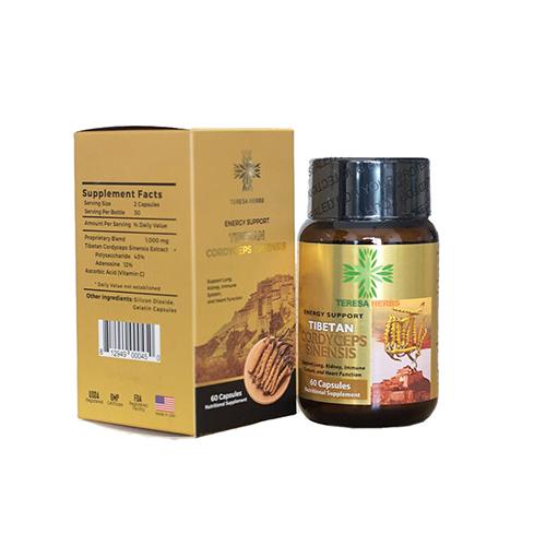 tibetan-cordyceps-sinensis-extract